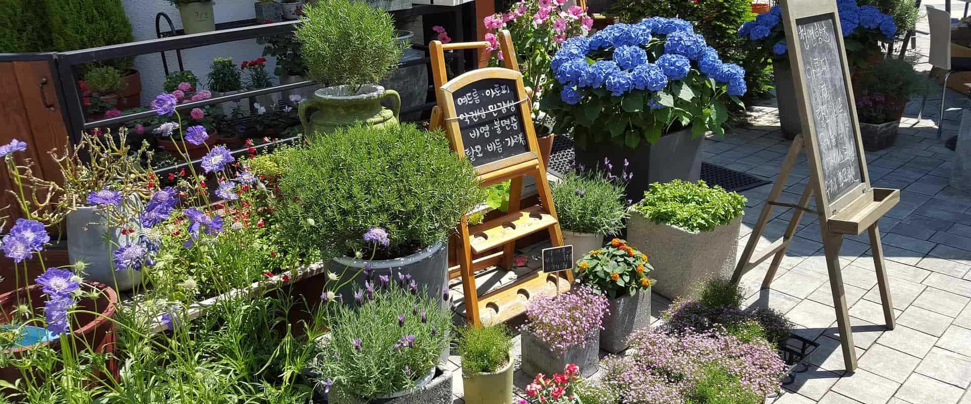 Mobiler Fahrverkauf für Blumengeschäfte