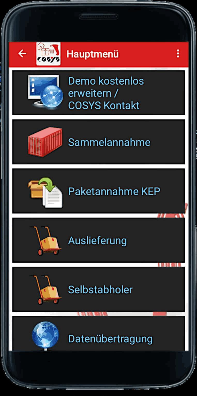 COSYS Demo App für Hauspost